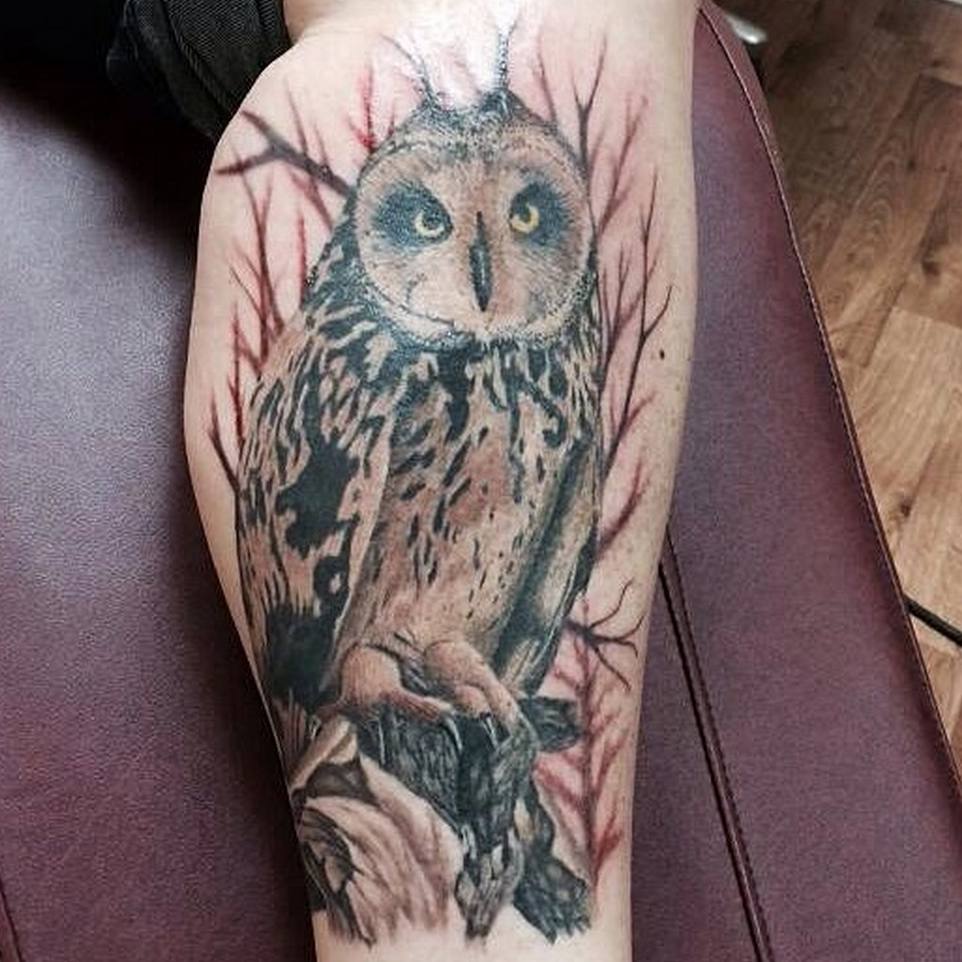 MJ Bonanno - Owl Tattoo
